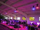 Скачать изображение Разное Квантовая фототерапия КРС, МНС, свиньи 38481615 в Москве