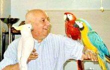 Приму в ответственные руки попугайчиков- в Москве