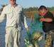 Foto в Хобби и увлечения Рыбалка Прекрасный отдых и гарантированный улов ждут в Москве 500