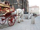 Изображение в   Мы сделаем Ваше пребывание а Австрии незабываемым. в Москве 0