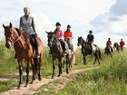 Изображение в   Прогулки на лошадях от частной конюшни Эквилого в Москве 1000