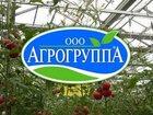 Фотография в   ООО «Агрогруппа» производит оптовые поставки в Москве 130