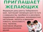 Фотография в Спорт  Спортивные клубы, федерации Федерация джиу-джитсу Хабаровского края, в Хабаровске 1500