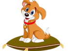 Изображение в Собаки и щенки Вязка собак Квартирная передержка собак мелких и средних в Москве 300