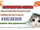 Фото в Бытовая техника и электроника Другая техника Ветеринарная помощь на дому и в клиниках. в Москве 500
