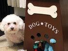 Смотреть foto  Бокс для хранения игрушек собаки 39865039 в Москве