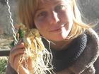 Уникальное фото  Женьшень свежие корни для приготовления состава 69871992 в Владивостоке