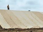 Скачать фотографию  Рулонный газон Биомат, услуги по укладке 76701826 в Казани