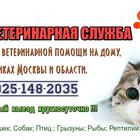Ветеринарная помощь на дому и в клиниках, Вызов (выезд) ветеринара на дом