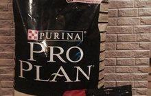 Корм Pro Plan 18 кг, Палочки в подарок