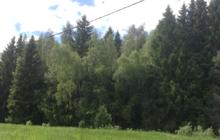 Прилесной участок ИЖС в Новой Москве в деревне Каменка в 28 км от МКАД