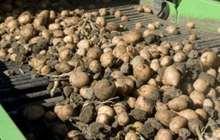 Продам сельхозпредприятие