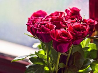 Увидеть фото Разные услуги Розы с бесплатной доставкой 33737303 в Москве