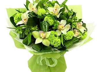 Новое изображение Разные услуги Многообразие орхидей для вас 33737330 в Москве