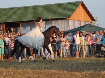 Увидеть foto Спортивные клубы, федерации Школа верховой езды 35367736 в Москве