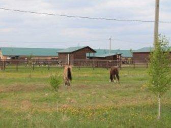 Скачать фото Продажа домов Продажа домов 37829219 в Москве