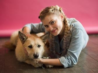Смотреть foto  Ищет семью пшеничная красавица Доди! 44194435 в Москве