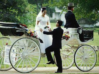 Скачать бесплатно foto Организация праздников Видеооператор на свадьбу полный день 69229662 в Москве
