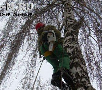 Фотография в Услуги компаний и частных лиц Разные услуги Компания ГОР предлагает услуги арбористов. в Москве 250