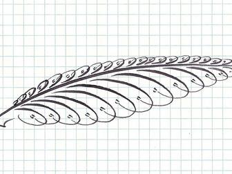Смотреть фотографию Репетиторы Каллиграфия Красивый почерк за 20 уроков 38608933 в Мурманске