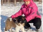 Фотки и картинки  смотреть в Нижнем Новгороде
