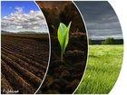 Скачать бесплатно фотографию  Чернозем плодородный грунт с доставкой по Нижнему Новгороду 42569369 в Нижнем Новгороде