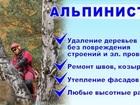 Фото в   Профессионально проведём работы по спилу в Новороссийске 0