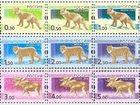 Скачать бесплатно фото  Куплю почтовые марки 34371023 в Новосибирске