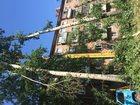 Изображение в Услуги компаний и частных лиц Услуги эвакуатора пилим деревья разных размеров разной сложности в Новосибирске 500