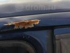 Foto в   Автомобиль без пробега по рф.   Таможня 2013 в Новосибирске 110000
