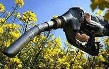 Дизельное топливо, услуги доставки, заправки Вашей техники