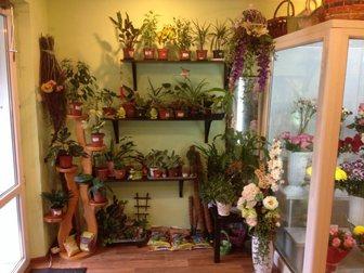 Просмотреть фотографию  Цветочный салон на Красном проспекте 34128209 в Новосибирске