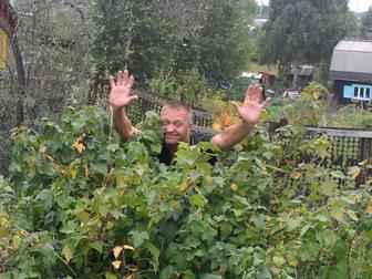 Новое фото  Дача в черте города, 36878083 в Новосибирске