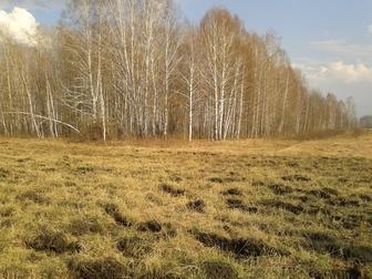Просмотреть foto Коммерческая недвижимость Административно-производственное здание 37810411 в Новосибирске