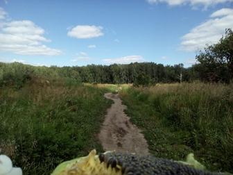 Просмотреть foto Земельные участки Ухоженный садовый участок 4 сотки 68058868 в Новосибирске