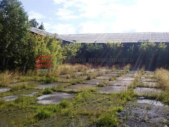 Просмотреть изображение  Продажа земельного участка в рп Коченево 68832483 в Новосибирске