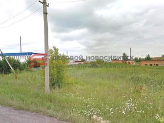 Уникальное изображение  Продажа земельного участка в рп Коченево 68832483 в Новосибирске