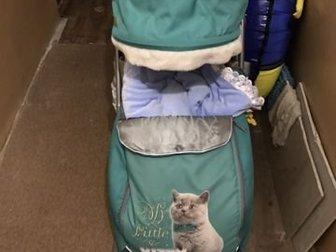 В идеальном состояние(как новые), пользовались очень мало, полный комплект , сумка!Возможна доставка!Цена в магазине 7500Состояние: Б/у в Новосибирске