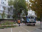 Свежее foto  Удаление опасных/аварийных деревьев 35123295 в Омске