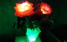Светящиеся цветы (Hand made)