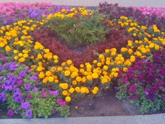 Уникальное фото Ландшафтный дизайн Цветы постоянноцветущие, Клумбы и цветники, 32484406 в Пензе
