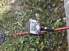 Скачать фото Разное Продам новый металлоискатель Minelab X-Terra 505 36724963 в Перми
