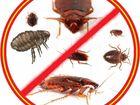 Увидеть изображение Химчистка Дезинсекция - уничтожение насекомых 56103352 в Перми