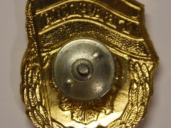 Просмотреть фото Коллекционирование Нагрудный знак Гвардия Россия, Лот 1 53385160 в Перми