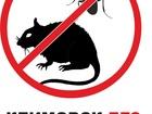 Скачать фото  Уничтожение тараканов, клопов в подольске 34744232 в Подольске