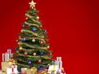 Уникальное изображение  Живые елки на Новый год 37753218 в Подольске