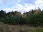 Смотреть фото Земельные участки Продам участок: деревня Литвинов, ДНП «Ёлкино» 40024470 в Раменском