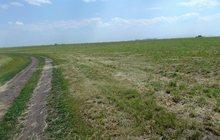 Продам участок 11га в Рязанской области