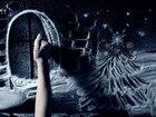 Уникальное изображение Организация праздников Снежное шоу в Ростове 35869963 в Ростове-на-Дону