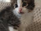 Просмотреть foto Отдам даром Игрушечный малыш 36875656 в Ростове-на-Дону
